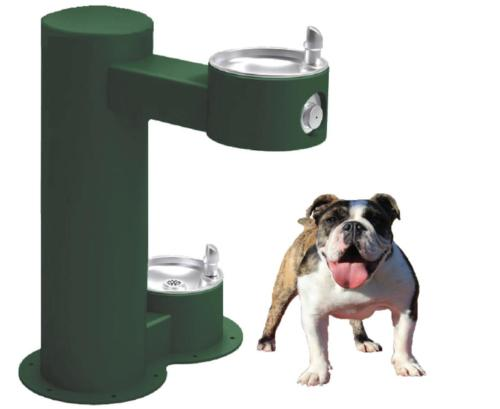 Cool Dog ADA Drink -Green