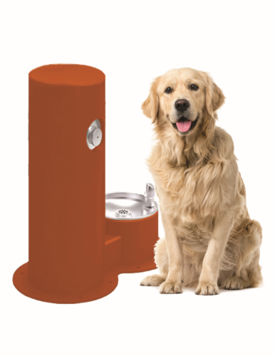 Cool Dog Waterfountain Drink - Orange